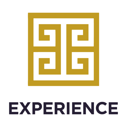 THEMIS-Experience